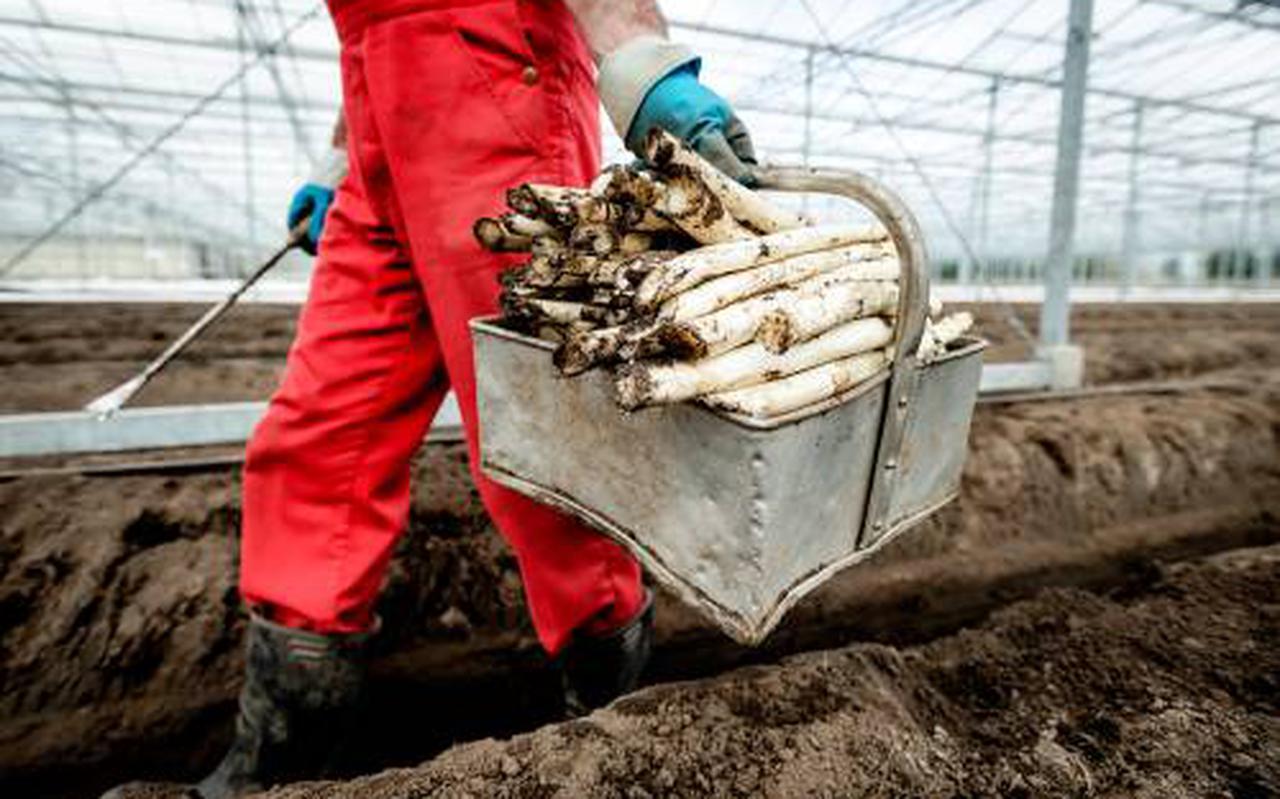 Zonder extra impulsen belooft de zo vurig bepleite verduurzaming van de land- en tuinbouw nog een uiterst complex proces te worden. Meerdere recent uitgebrachte onderzoeken maken dat duidelijk.