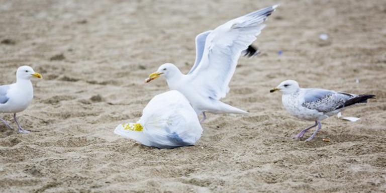 Bijna 1,4 ton afval ingezameld op stranden