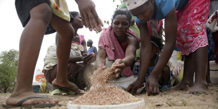 Meer mensen met voedseltekort in Zimbabwe