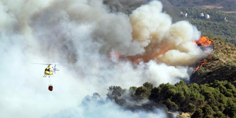 Onderzoek naar effect bosbrand op klimaat