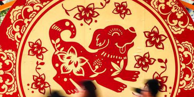 China speelt op zeker in Jaar van de Hond