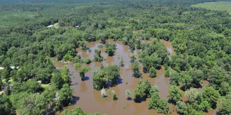 Acht doden door overstromingen Louisiana