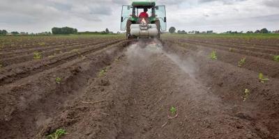 Telen van zaad beslaat meer grond