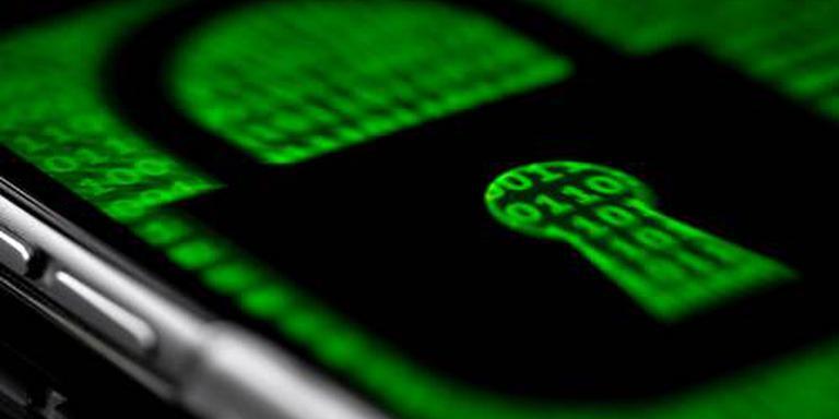 Celstraf voor in Nederland opgepakte hacker