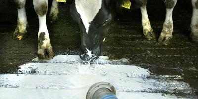 Melk loopt weg in de strontput. FOTO CATRINUS VAN DER VEEN
