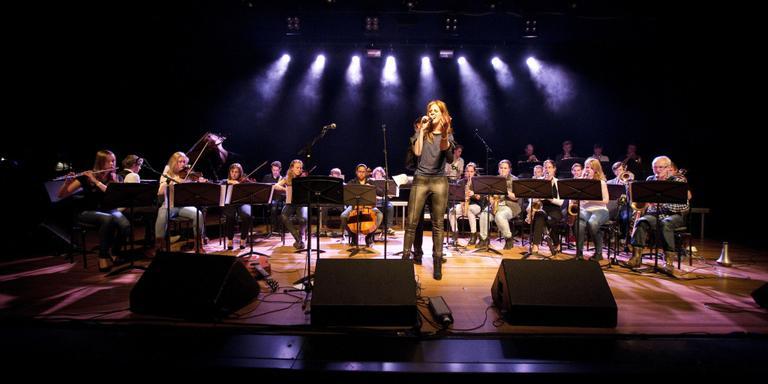 Goede muziek, minder volk: Freeze zoekt