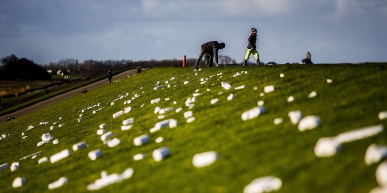 Vrijwilligers ruimen de dijken bij Moddergat op. FOTO ANP/SIESE VEENSTRA