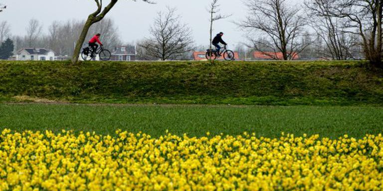 'Weerprimeur' voor Eindhoven met 20 graden