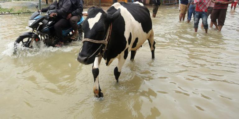 Ruim honderd doden door storm in India
