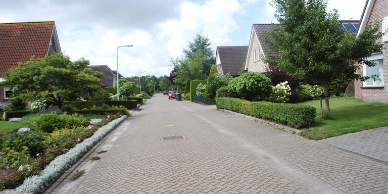 Mooie voortuinen bevorderen de waarde van de woningen, het straatbeeld en het imago van een dorp. Hier een beeld van Oldeholtopade FOTO HIEKE JOOSTEMA