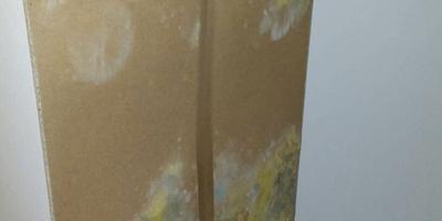 De schimmel in het huis van de Mollema's. Eigen foto