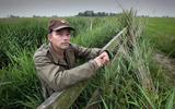 Hoe het vogelparadijs van Hessel ineens voer voor koeien in Limburg werd