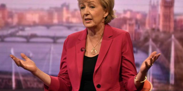 Johnson steunt Andrea Leadsom