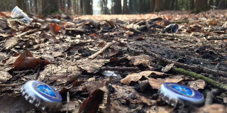 De laatste jaren kwamen er tegen het eind van februari meerdere meldingen van overlast uit de omgeving. FOTO LC.