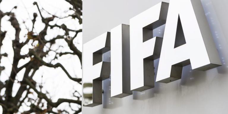 FIFA schorst bobo's