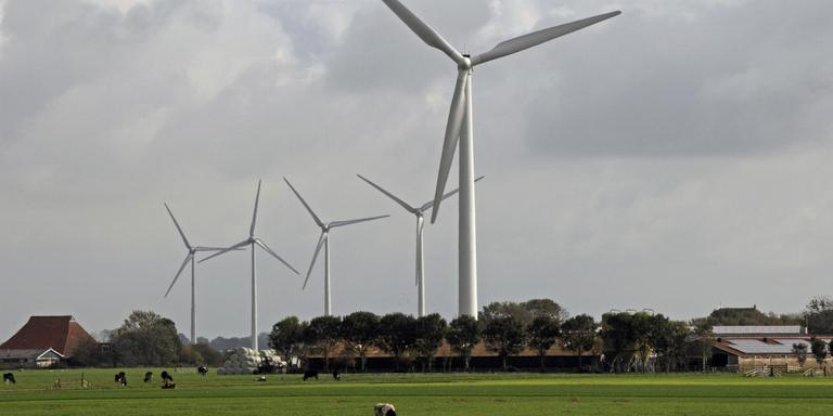 Documentaire over windmolenpolitiek