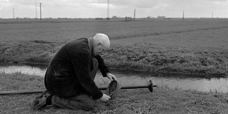 Eind april 1952: een ouderwetse aaisiker op pad in de ferbeane tiid. FOTO ARCHIEF LC.