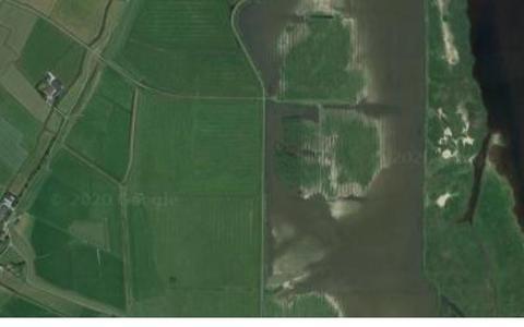 Provincie onzorgvuldig, rechter zet streep door nieuwe loopstal bij Lauwersmeer
