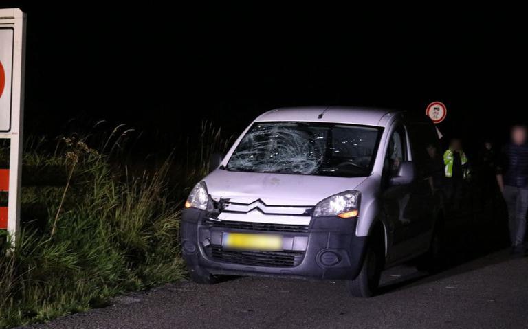 Hond doodgereden en wandelaar gewond na aanrijding met auto op Litswei bij Rottevalle.