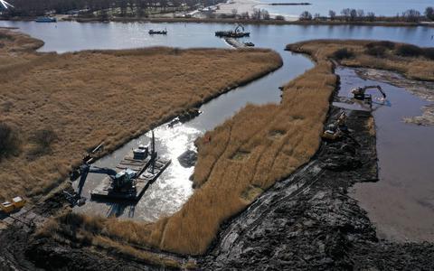 Droog riet op de Makkumer Noordwaard wordt uitgegraven en gaat per schip naar de vismigratierivier bij Kornwerderzand, ter versteviging van de oever.