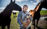 Oproep aan de financiële sector: 'Stop met financieren van dierenleed'