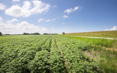 Smeus: Een smakelijke puree van aardappels, garnalen en botermelk   Jacques Hermus om de Noord