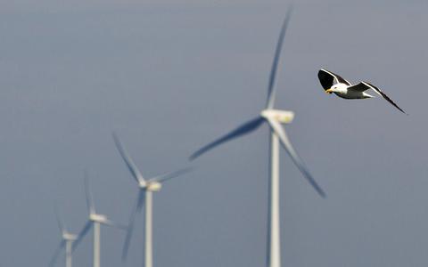 D66 ziet grote kansen op het gebied van groene waterstof. Energie-eilanden op zee moeten zorgen voor de productie en opslag hiervan.