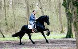 Dressuuramazone Friese paarden (35) dreigt beroemd 'Songfestivalpaard' kwijt te raken aan rancuneuze ex Dan Brown