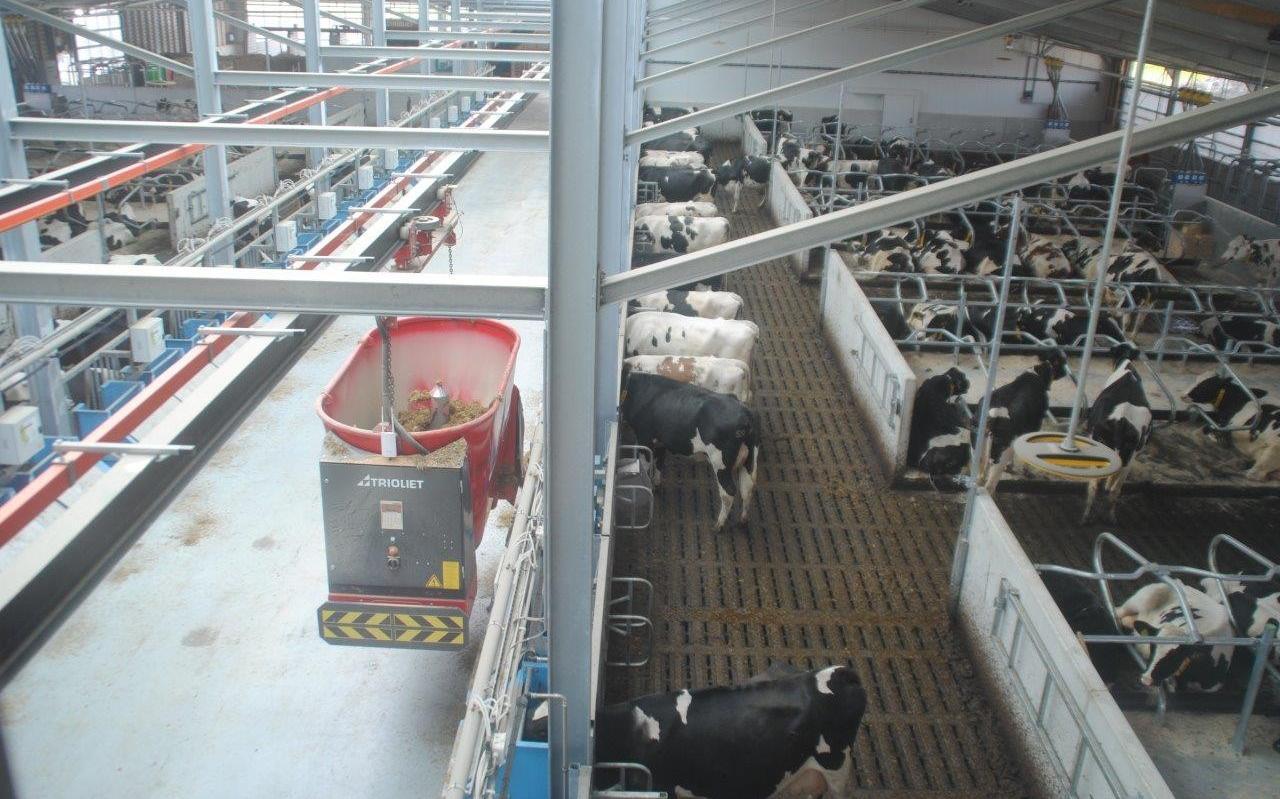 DSM liet bij de Dairy Campus in Leeuwarden onderzoek doen naar zijn methaanremmende middel.