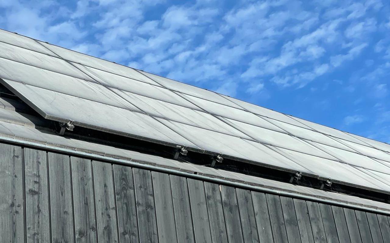 Door een fout bij dakrollenfabriek Soprema daalde twee weken geleden een witte kalklaag neer op zonnepanelen in IJlst. FOTO WERKGROEP GEUROVERLAST IJLST