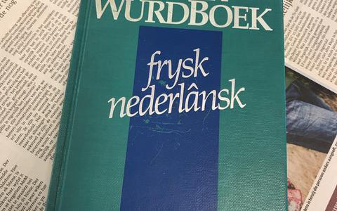 Wat zeuren we nog over het Fries