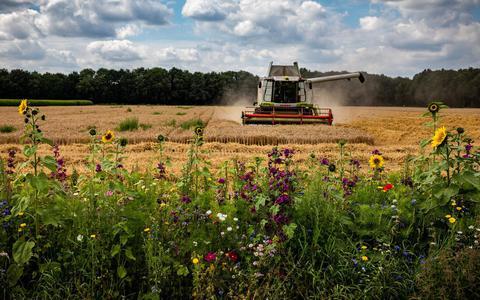 'De bodem is het fundament onder de landbouw.'