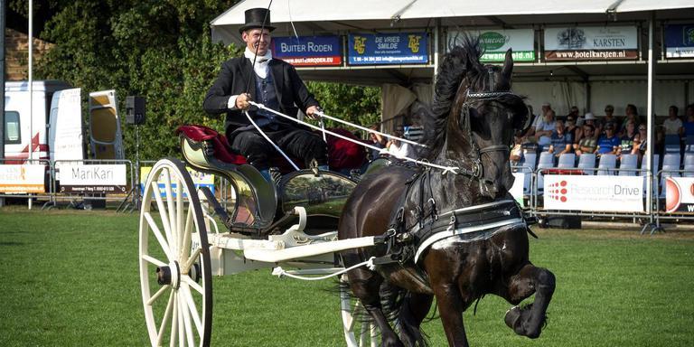 Hendrik Eppinga werd met Elisabeth M. kampioen van de fokmerries Fries ras. FOTO PETER WASSING