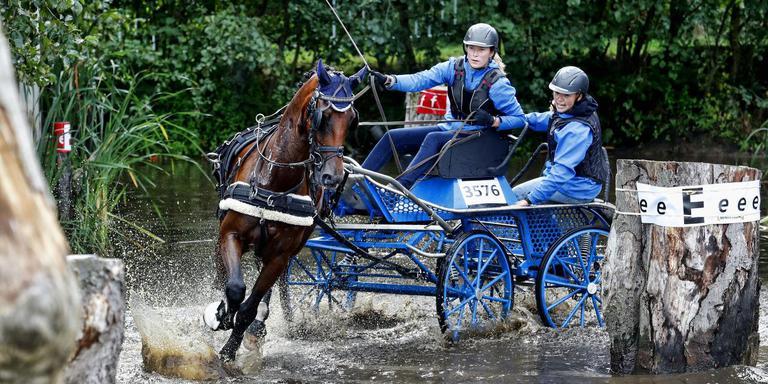 Spektakel genoeg bij het NK Mennen in Harich. Hier stuurt Sanne Janssen, winnares bij de paarden in de L-klasse door de brug met waterbak. FOTO HENK JAN DIJKS
