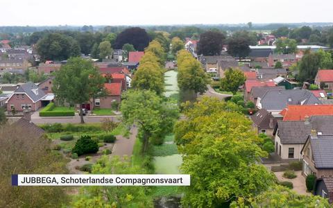 Sloten in zuidoosten van Friesland staan bol van waternavel: 'It groeit by de bisten ôf'